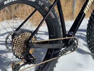 Bison Bicyle Co. Black Dog, fat tire bike, gears