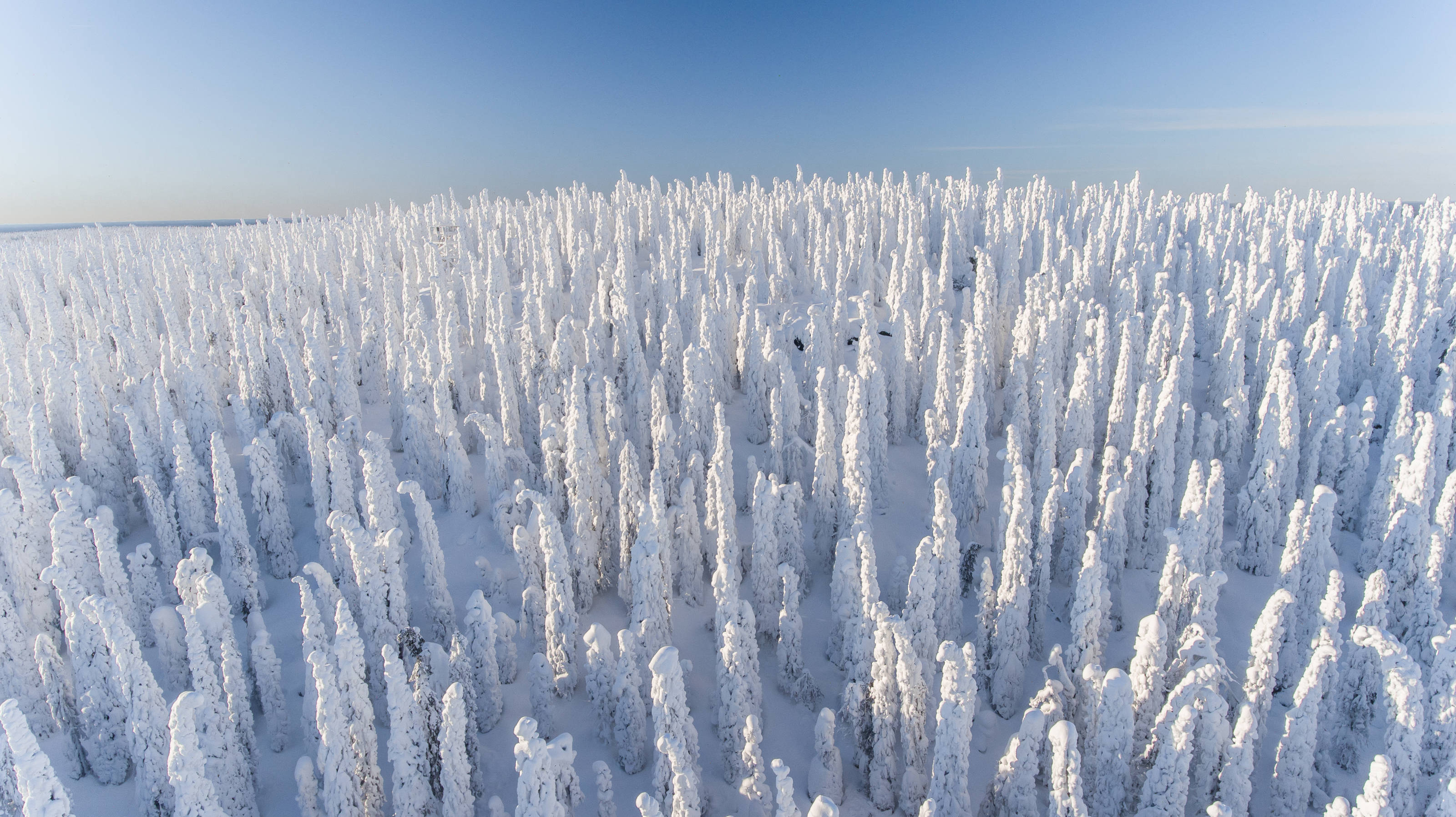Visit_Finland_Syöte-4.jpg