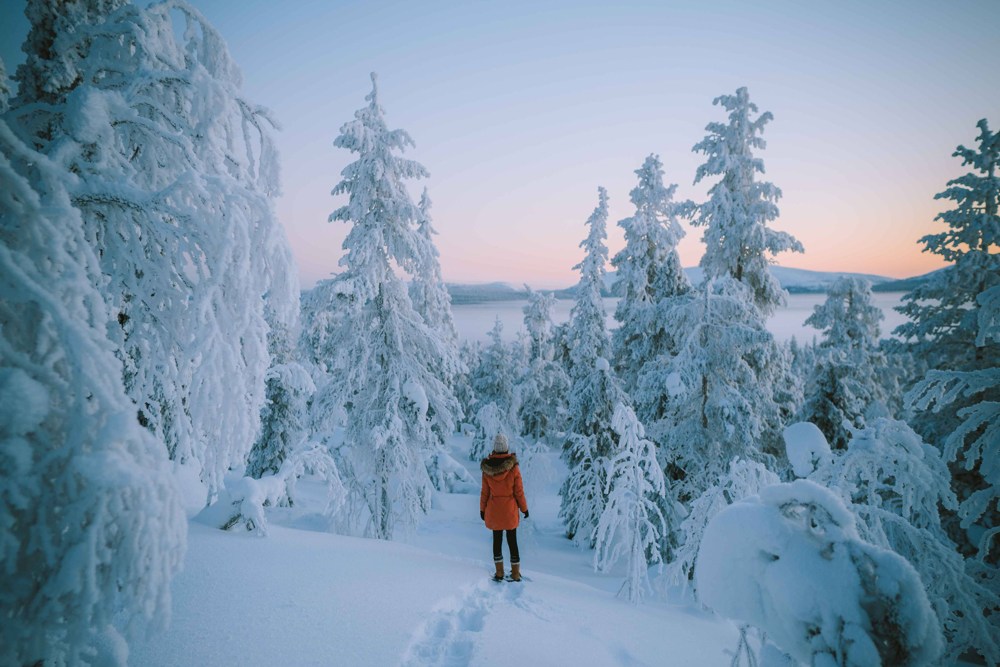 Finland_lapland_winter_ylläs.jpg