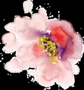 Little pretty flower design mightylinksfo