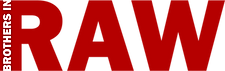 BIR_logo_woord_kleur.png