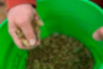 DALC Erickson Prairie Seeding _MG_5265.j