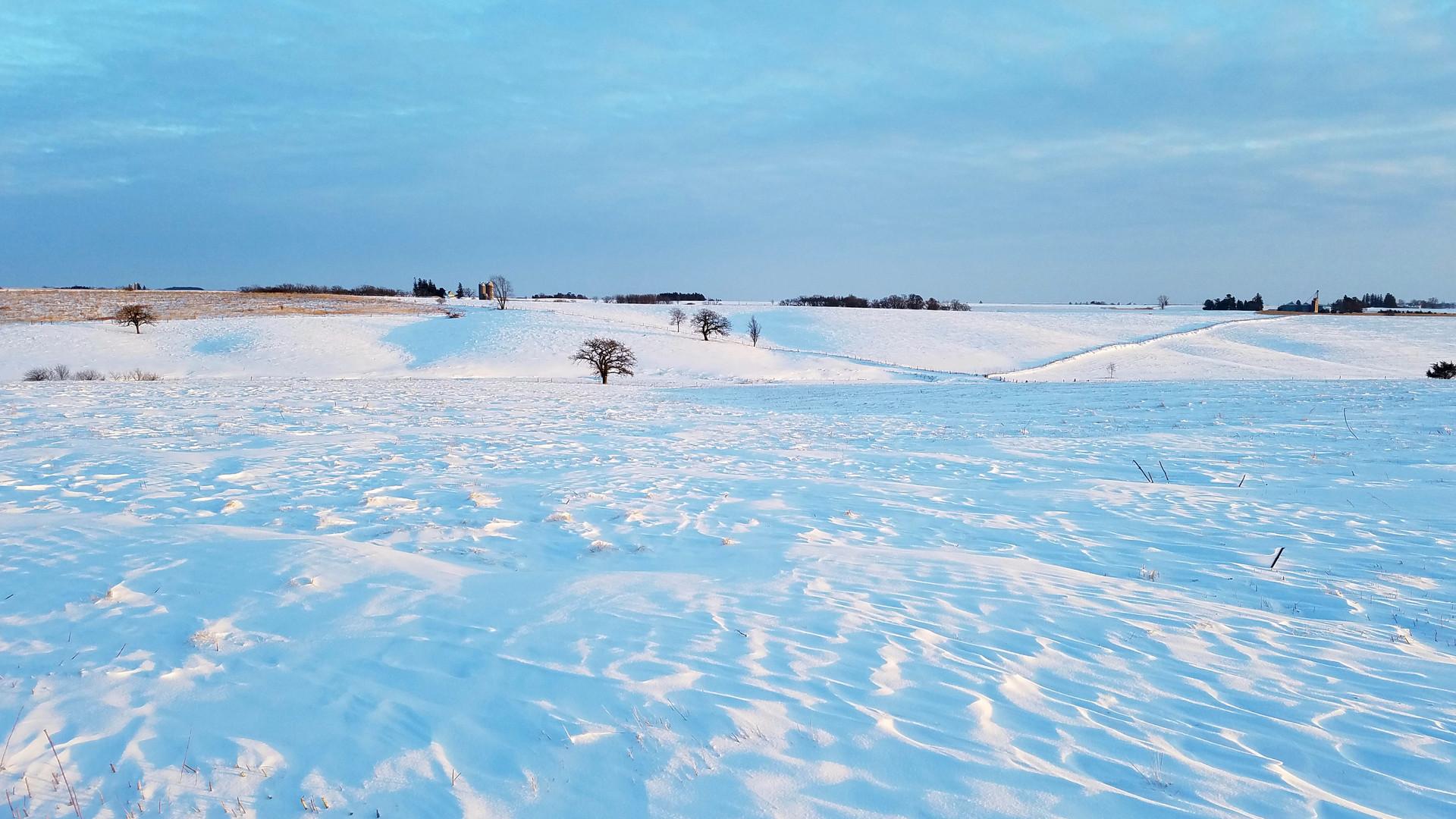 winterprairie (1).jpg