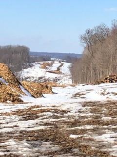 Transmission Line Project Threatens National Wildlife Refuge
