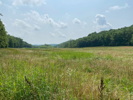 DALC Acquires Spring Valley Tract