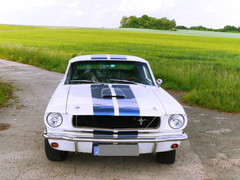 Ford Mustang GT 350 | 1