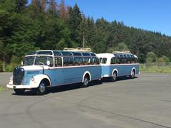 Mercedes Bus O 3500 | 12
