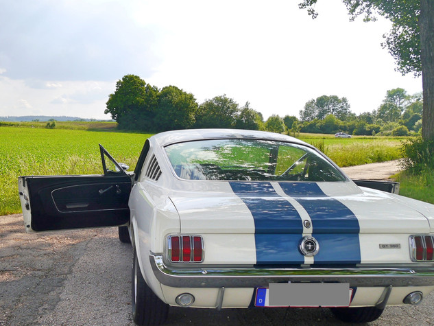 Ford Mustang GT 350 | 6