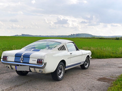 Ford Mustang GT 350 | 4