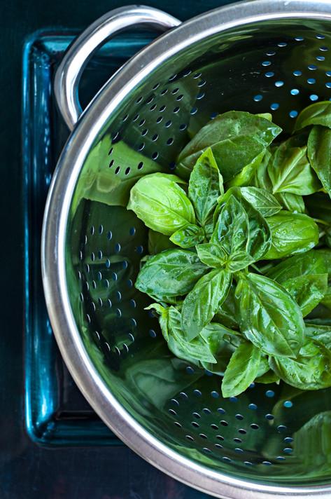Fresh Basil.jpg