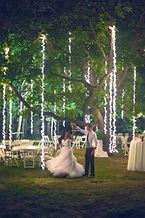 The Wedding Tree.jpg
