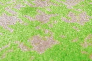 Fußmatte grün