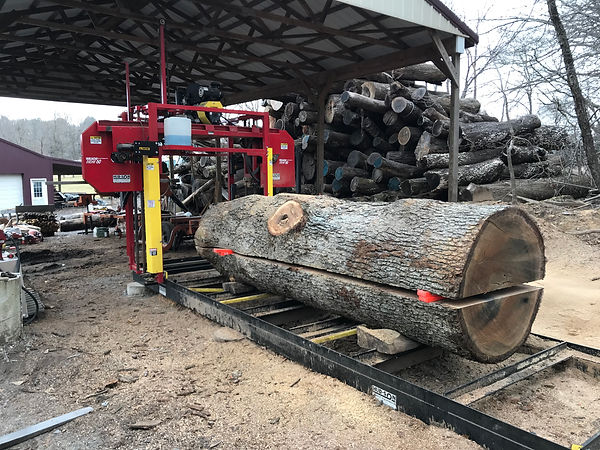 Quarter Saw Large Oak.jpg