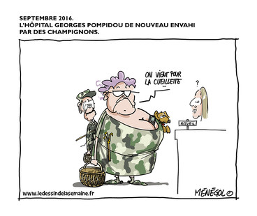 09 SEPT. 2016 - HÔPITAL DE CAMPAGNE