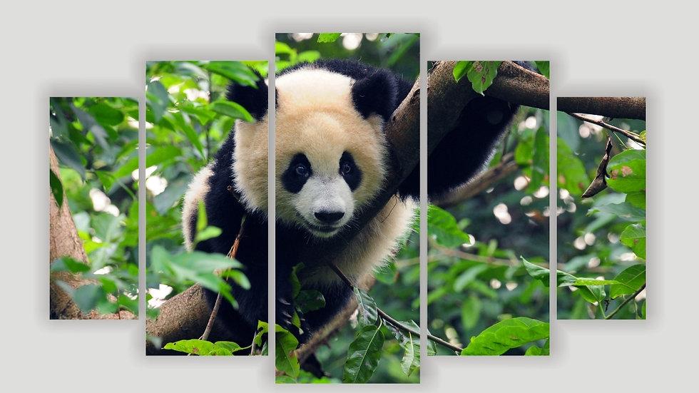 Модульная картина «Панда»