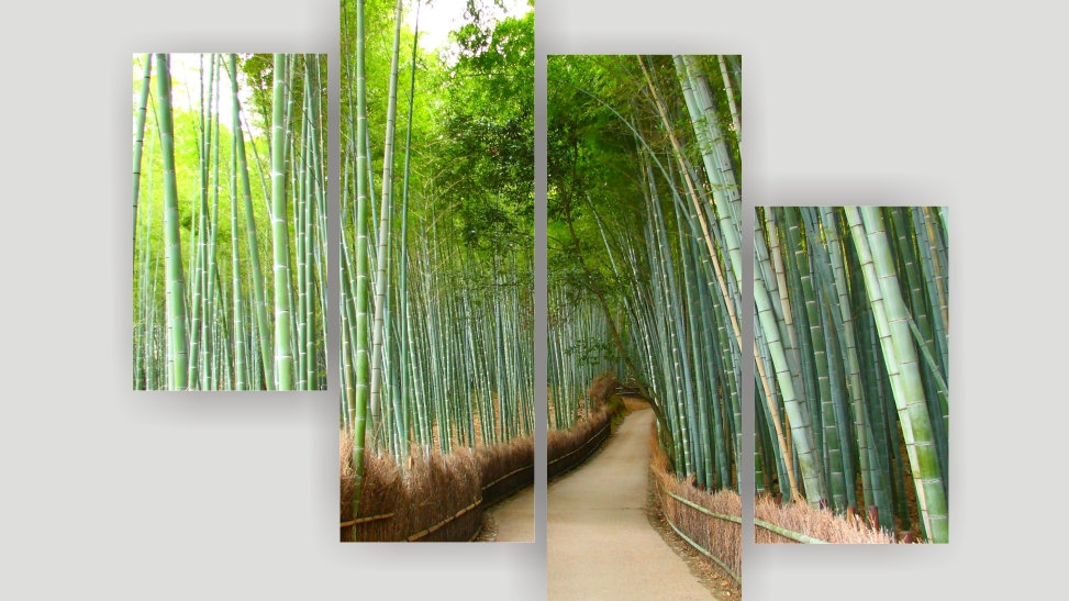 Модульная картина «Бамбуковый лес»