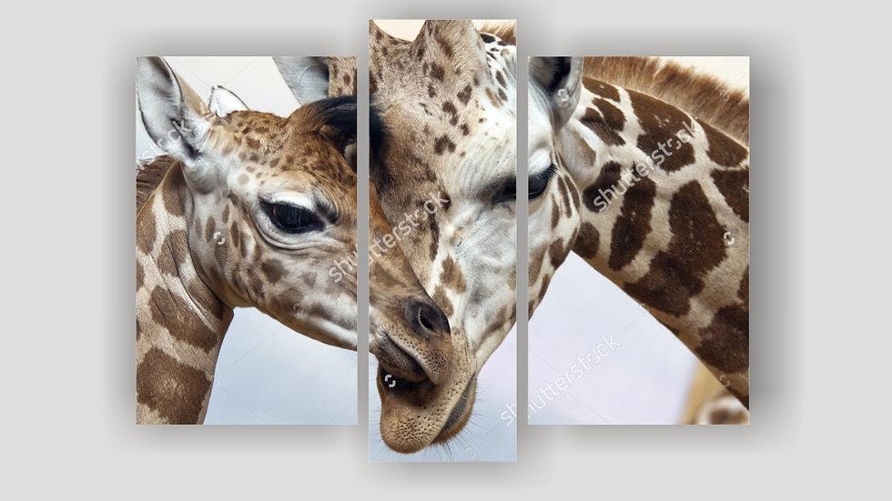 Модульная картина «Жирафы»