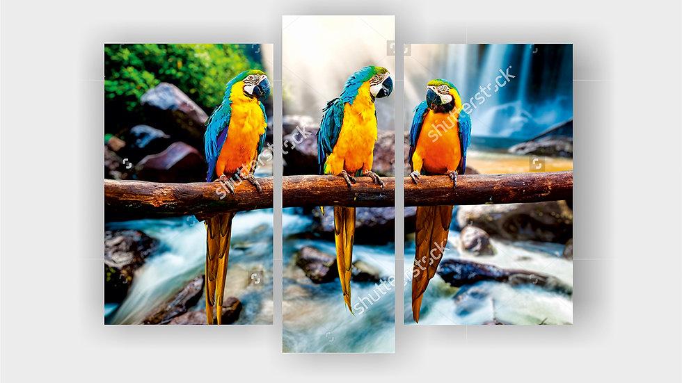 Модульная картина «Попугаи»