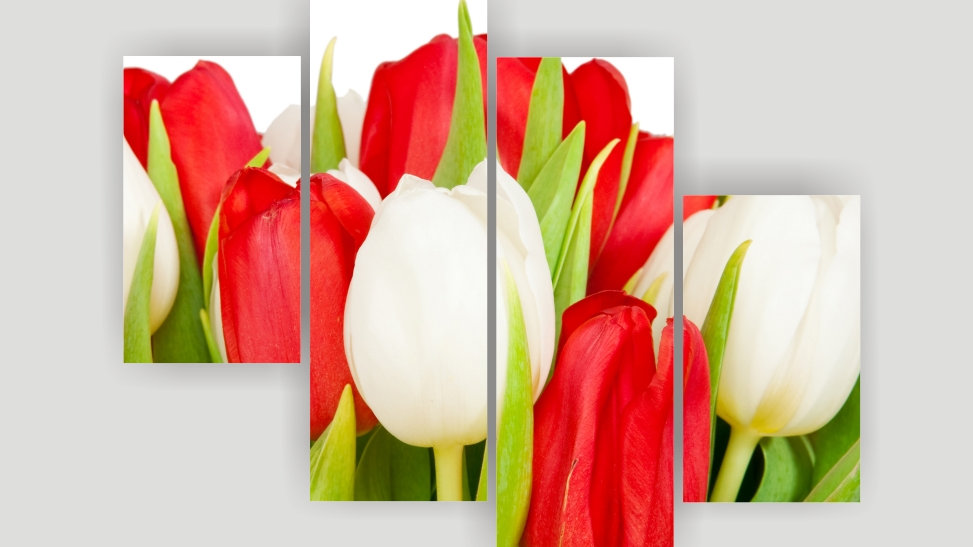 Модульная картина «Красное и белое»