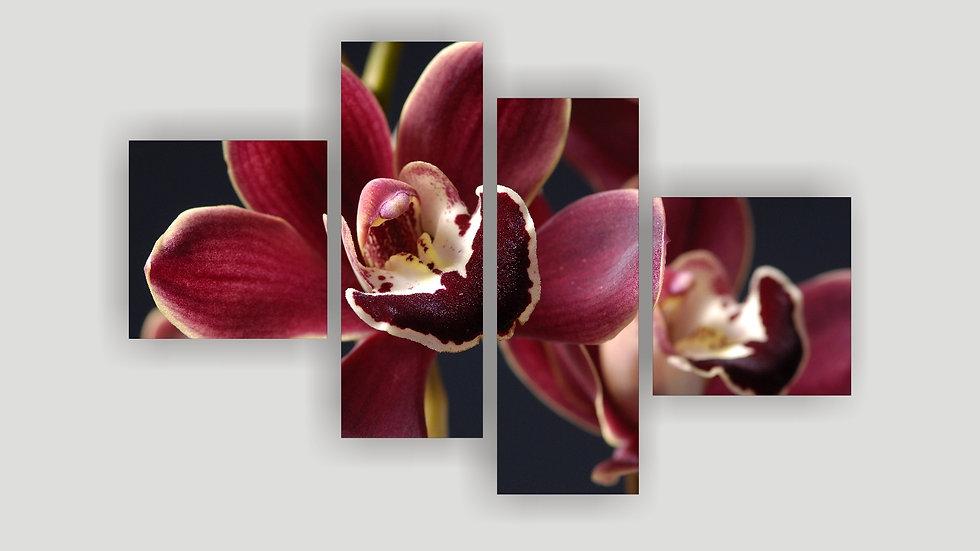 Модульная картина «Орхидея бордо»