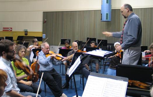 ANZVS Viola Voce Auckland March 2011