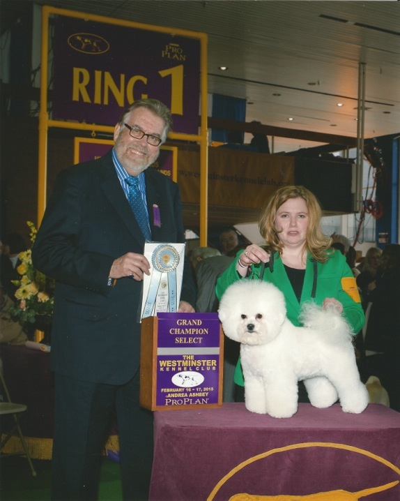 """Carli"" 2015 Westminster Kennel Club"