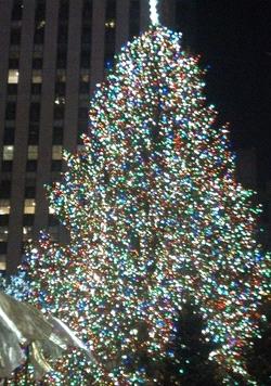 Please say 'Merry Christmas!'