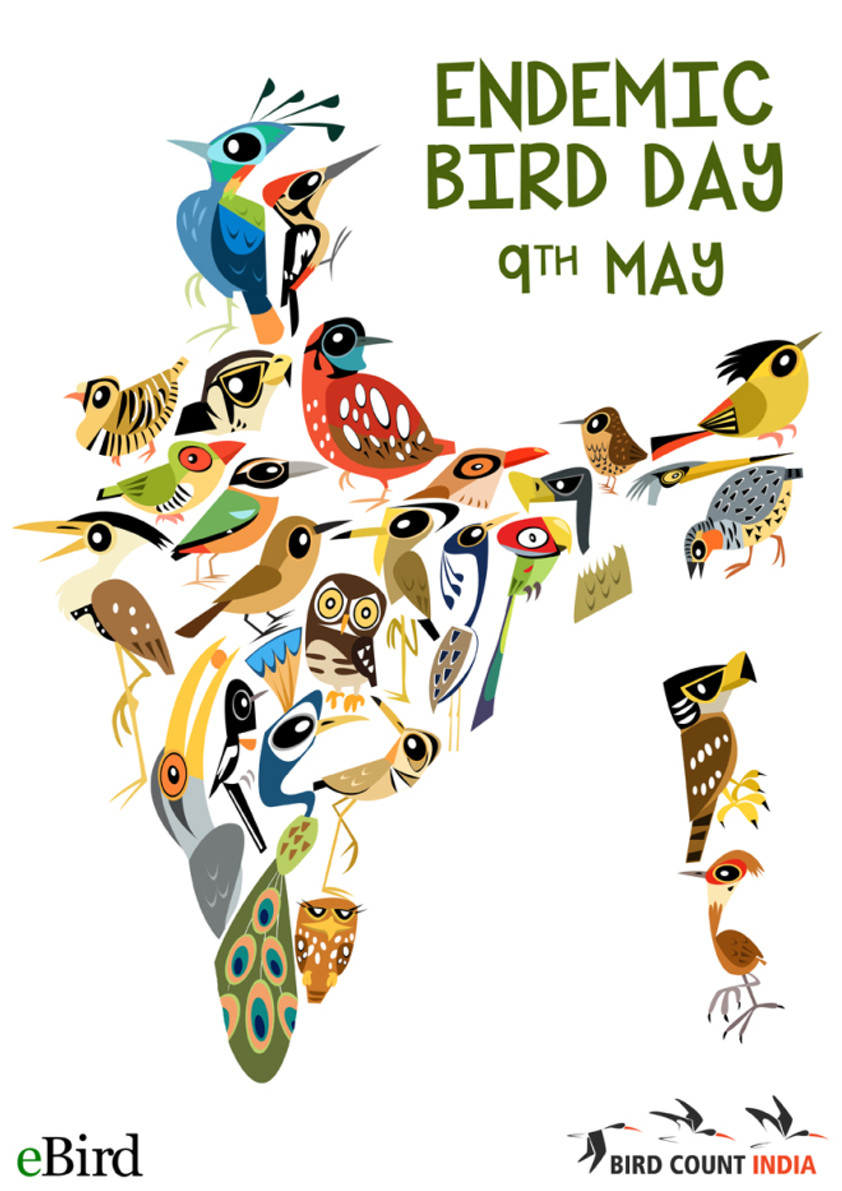 Fantastic artwork of the Indian Endemic Bird Day event to be held in conjunction with the Global  Big Day.