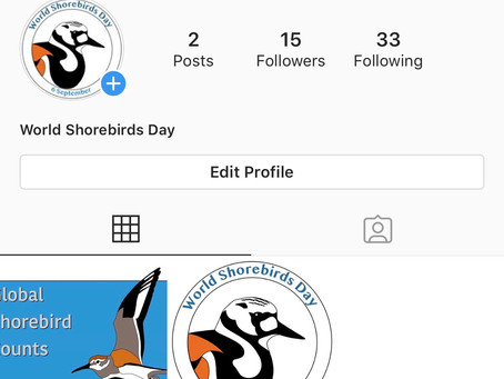 We are on Instagram now