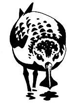 SBS-TF_logo.jpg