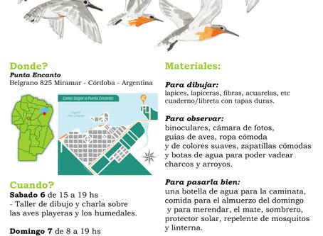 Shorebird workshop in Argentina