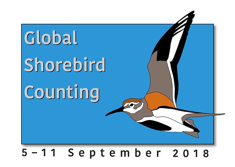Global Shorebird Counting logo 4 3
