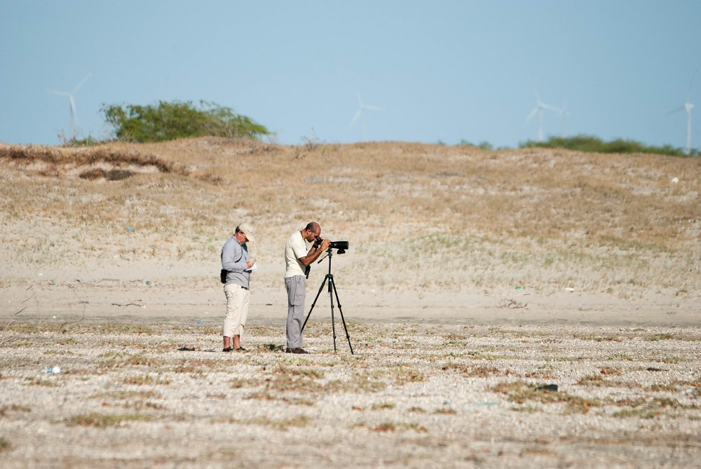Ricardo Duarte/UFRN (Jason Mobley of Aquasis and Marcelo Rodrigues of UFRN identifying and counting shorebirds in Porto do Mangue -RN for WSD on Sept. 6, 2016)