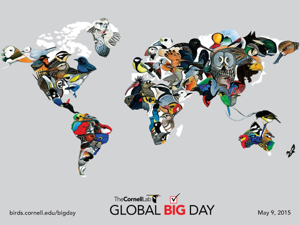 Cornell_Lab_Global_Big_Day_Map-1024x768