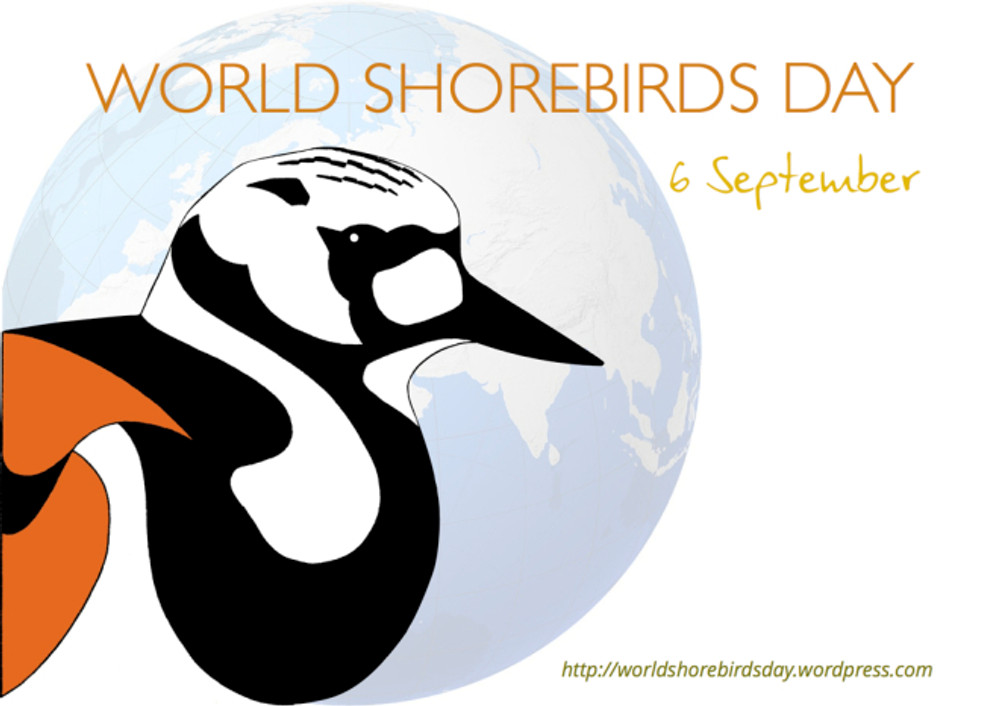 World Shorebirds Day1000