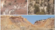 Blog 10: Outback Australia