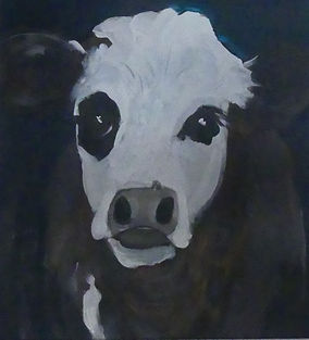 white%20faced%20cow_edited.jpg
