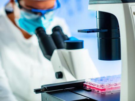 Veterinary Pathology - Degenerations & Infiltrations