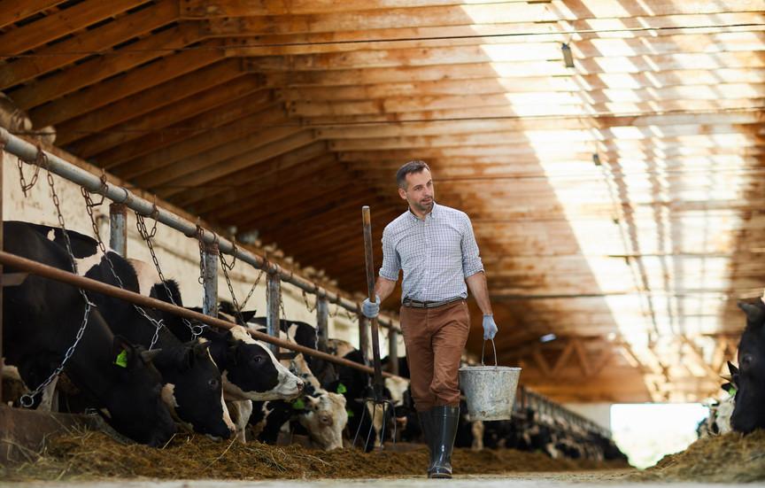 Farm Hygiene - A good practice guide