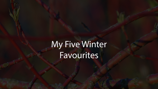 My Five Winter Favourites