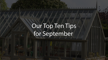 Our Top Ten Tips for September