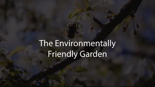 Encouraging Wildlife Into Your Garden (how to)