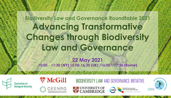 Biodiversity Law and Governance Roundtable 2021