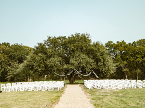 Leatherberry Oaks