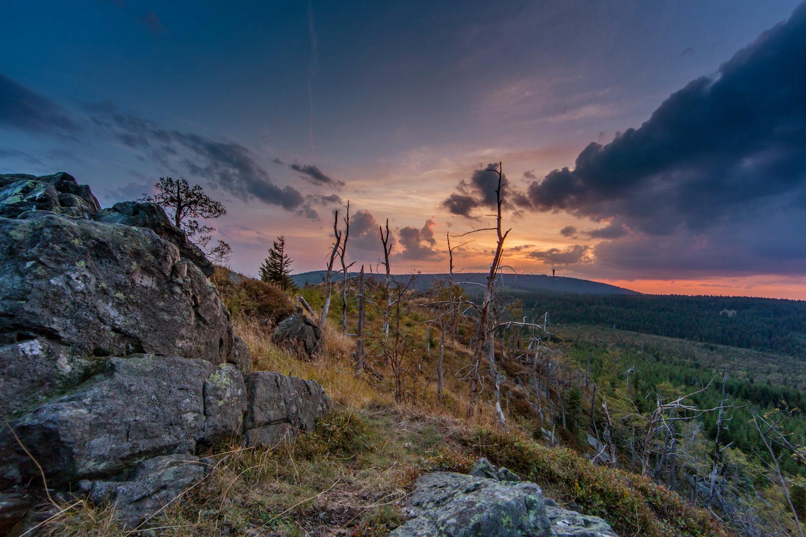 Meluzína, Krušné hory_w2
