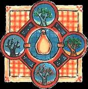 image medievale - lente maturation (tran