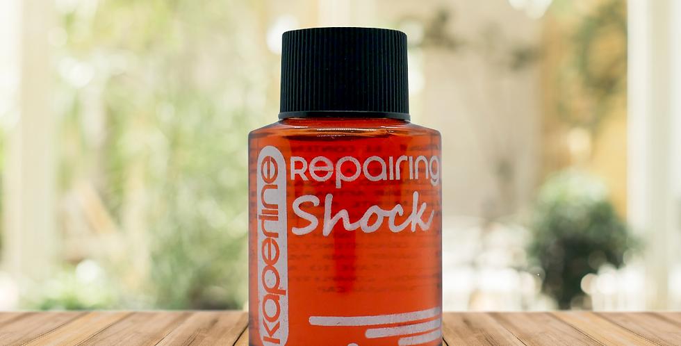 Oleo Repair Shock