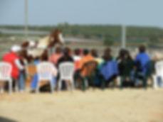 מנהל סוס הובלה הנעה מנהיגות סדנאות סדנא סדנאות מנהלים