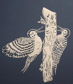 Pair of woodpeckers