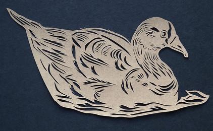 Duck (swimming)